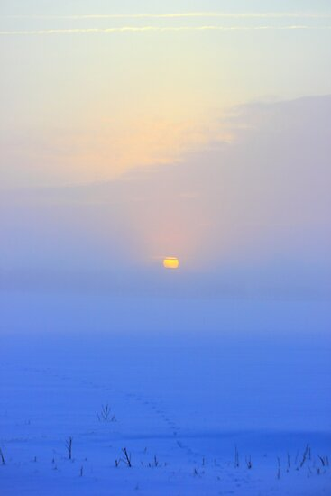 Frozen Misty Sunset by John Dunbar