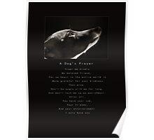 A Dog's Prayer Poster