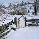 Winter's Gate by Betty  Town Duncan