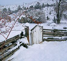 Winter's Gate by © Betty E Duncan ~ Blue Mountain Blessings Photography