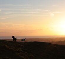 Dog Walk at Early Dawn by missbrodrick