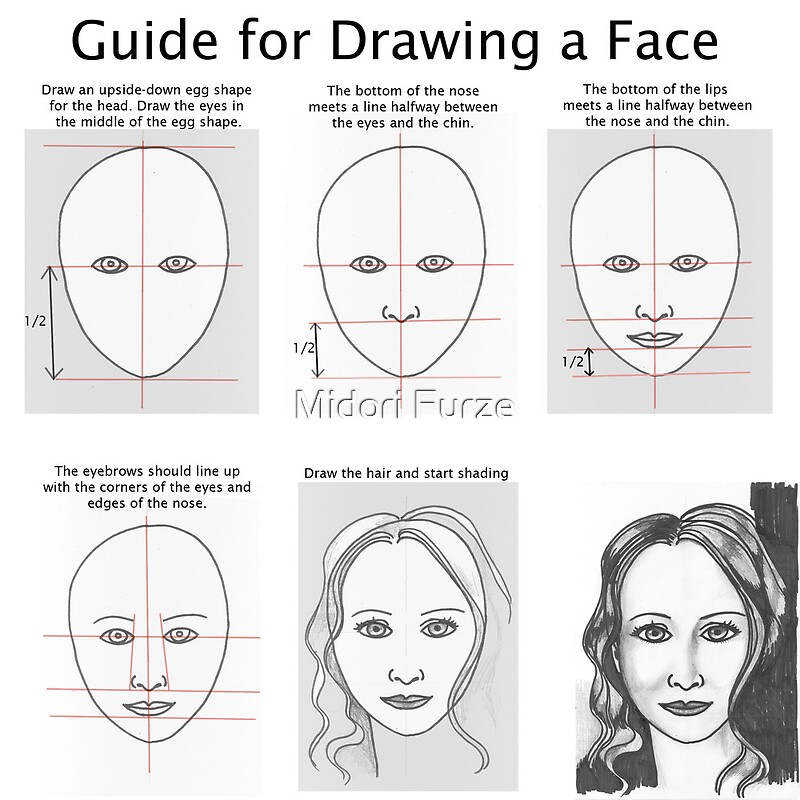 guide for drawing faces