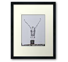 The Lift Off Framed Print