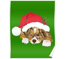 Red Merle Christmas Puppy in a Santa Hat Poster