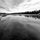 Yellowstone River by North22Gallery
