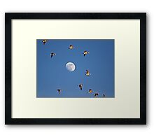 Flutterby the Moon Framed Print