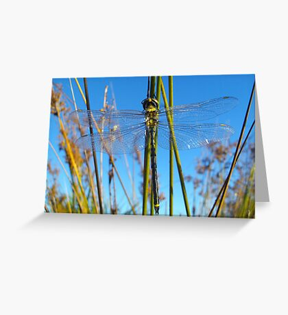 Time does not change us.  Greeting Card