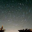 Night Sky by Robin Lee