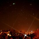 Salvo Nights by Robin Lee