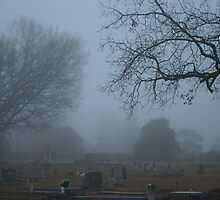 Cemetary Fog by Denise N Young