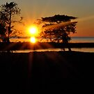 Salvo Sunset by Robin Lee