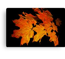 Autumness Canvas Print