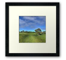 A Glorious Day in the Hills Framed Print