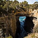 Tasman Arch and Blowhole by Roger Neal