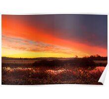 Ebey Slough Sunrise Poster