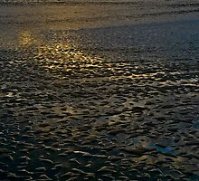 Sunset, Low Tide Near Half Moon Bay by Scott Johnson