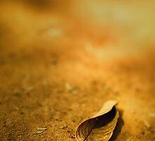 Solitaire by Deepak Varghese