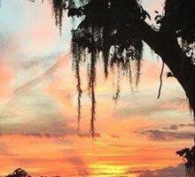 Oak sunset Sticker