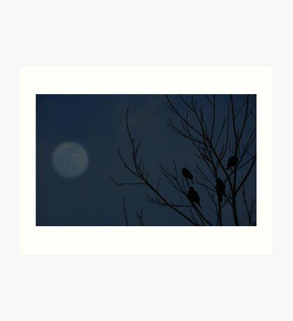 Roost by Moonlight Art Print
