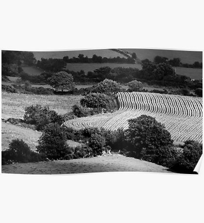Patchwork fields, Blackstairs Mountains, County Carlow, Ireland Poster