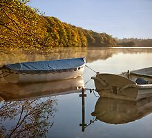 Boats at Hald by Paul Davis