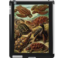 Land and Sea Turtles iPad Case/Skin