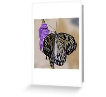 Self Propelled Flowers ~ Part Ten Greeting Card