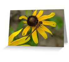 Official Flower Inspector Greeting Card