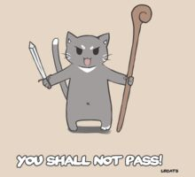 You shall not pass! by Felis