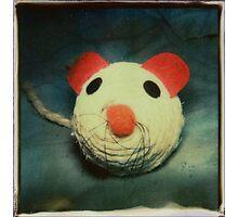 prey Photographic Print