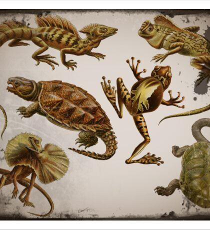 Prehistoric Reptiles Sticker