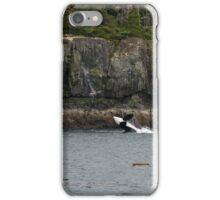 Orca Breaching, Telegraph Cove iPhone Case/Skin
