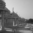 the Kaivalya Dham. by Rishi Kant Joshi