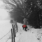 The Dog in the Red Coat by Vicki Spindler (VHS Photography)
