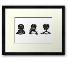 NOSES Framed Print