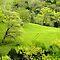 SPRING,GREEN, GREEN Landscapes