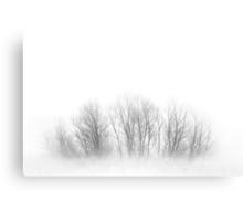 Fogged Family Trees Canvas Print