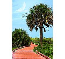 Boardwalk At Myrtle Beach State Park Photographic Print