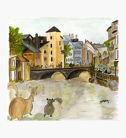 Annecy River Photographic Print