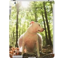 PIT BULL ANGEL iPad Case/Skin