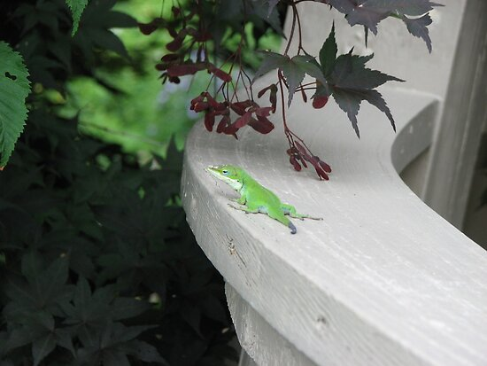 Anole-Bright Green by JeffeeArt4u