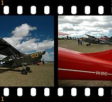 Stinson Sentinel Filmstrip @ Festival Of Flight 2011 by muz2142