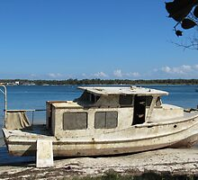 'ALL WASHED UP!' and a story to tell. Bribie Island, Que. by Rita Blom