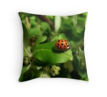 Red on Green Throw Pillow