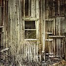 Old windows by vigor