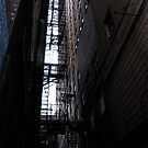 Chicago Alley by goshelbygo