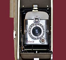 Polaroid 80A Camera Case by Reese Forbes