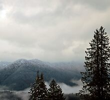 Cascades from Mount Pilchuck by North22Gallery