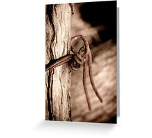 Rusty Wire Greeting Card