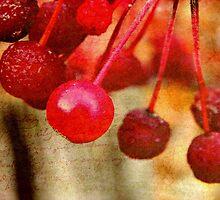 Cherry Berries!!! © by Dawn M. Becker